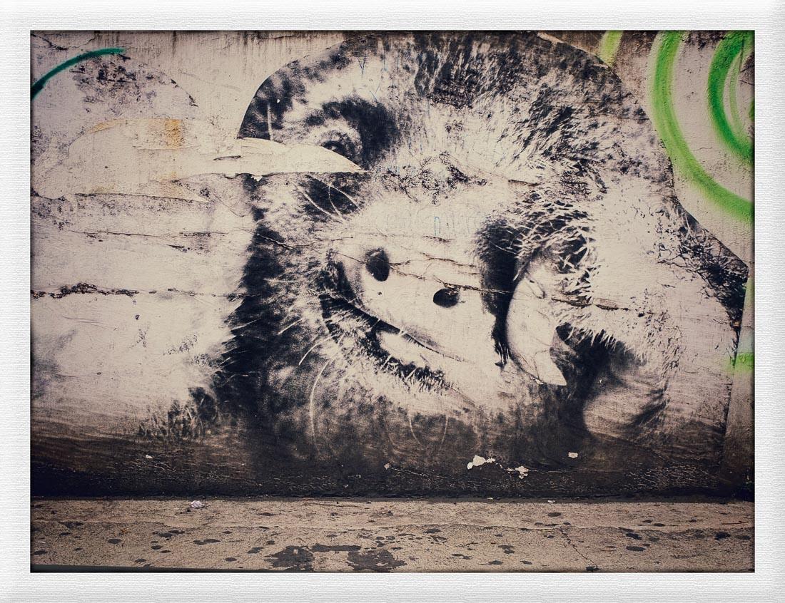 San Jose Street Art I (c) Michael Putzlocher Photography-28